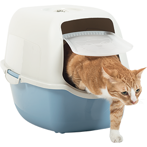 Rotho-My-Pet-Bailey Cat Toilet